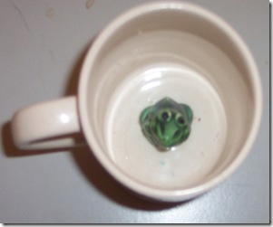 Frog Cup